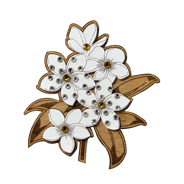 Fashion Accessories: Brooches - Frangipani
