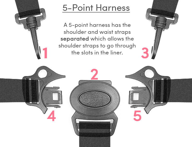 Five Point Harness