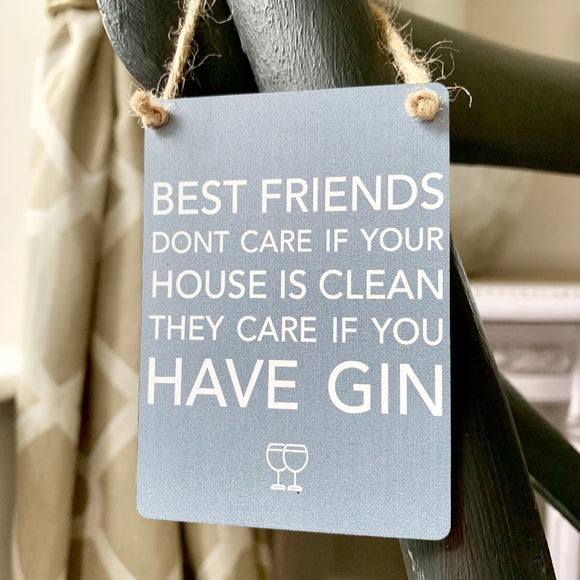 Best Friends Don't Care Gin Mini Metal Sign - Triftware