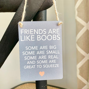 Friends Like Boobs Mini Metal Sign - Triftware