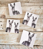 Hare Coaster Set (4) - Triftware