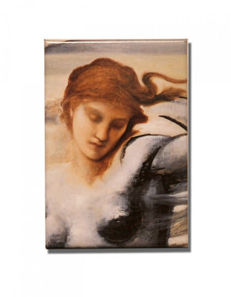 Stella Vespertina Fridge Magnet