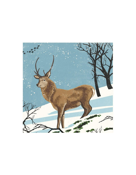 Stag in the Snow Set of 8 Cards