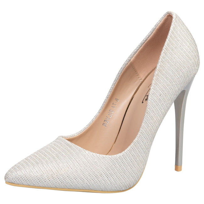 Laverne Pointed Toe Court Shoes in Silver Shimmer