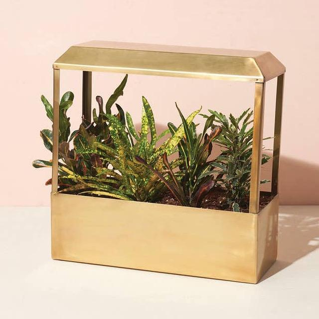Brass Indoor Smart Greenhouse