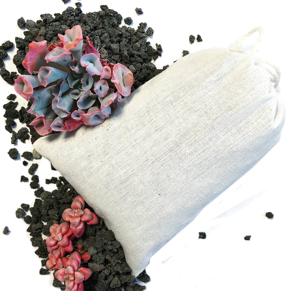 FREE SHIPPPING! A Bag of Each! (Black Pumice and Medium)