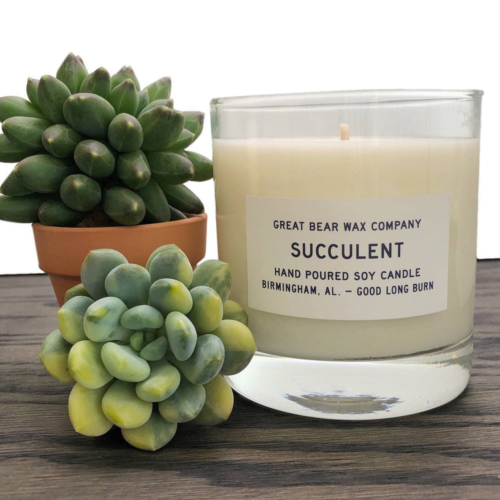Succulent Candle (by Great Bear Wax Co.)