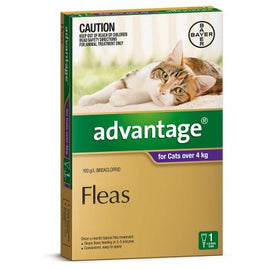 Advantage Purple For Cats Large 4kg+
