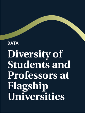 Diversity of Students and Professors at Flagship Universities