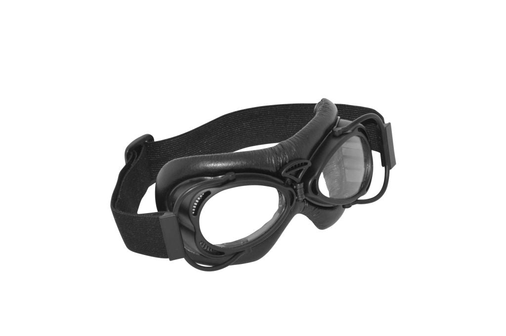 Goggles Dakota Black/black