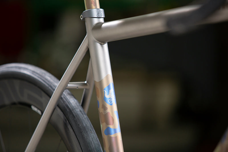 Close up showing the Vamoots RCS down tube with the custom