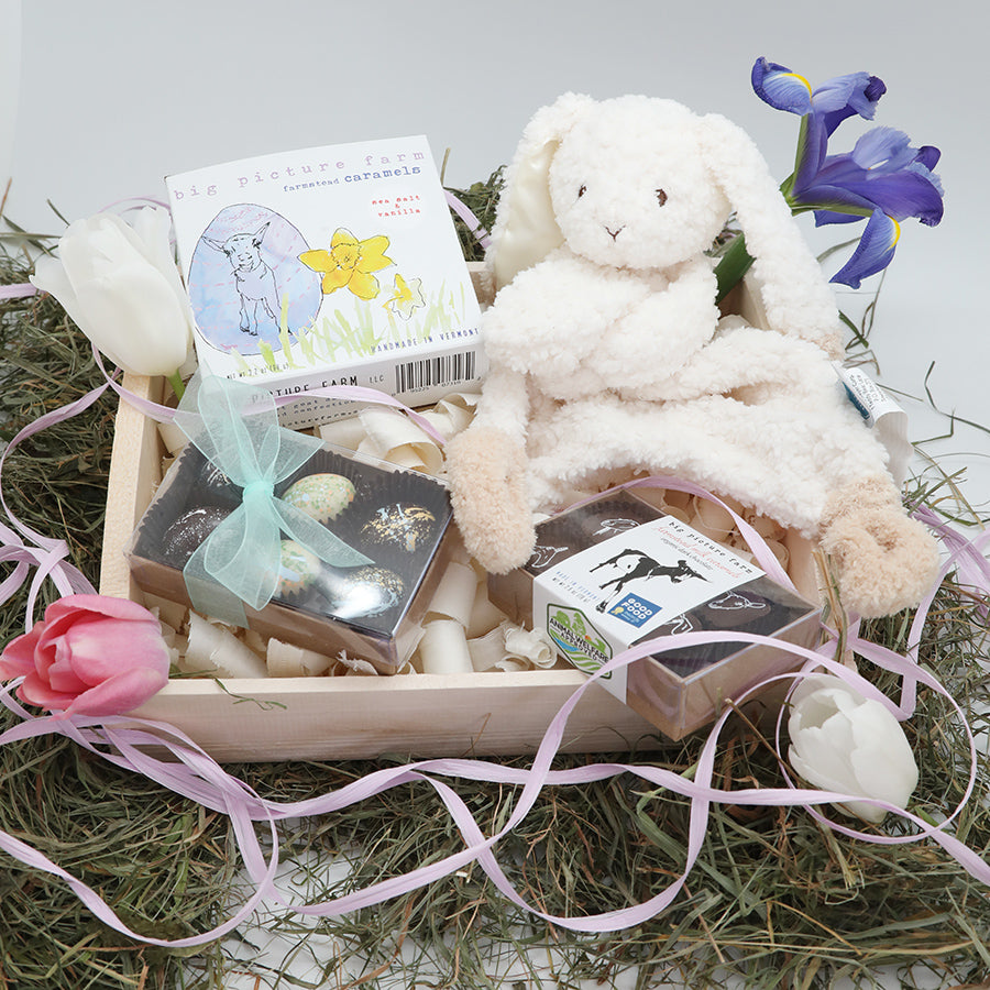 Easter Bunny Basket with Bunny Lovey