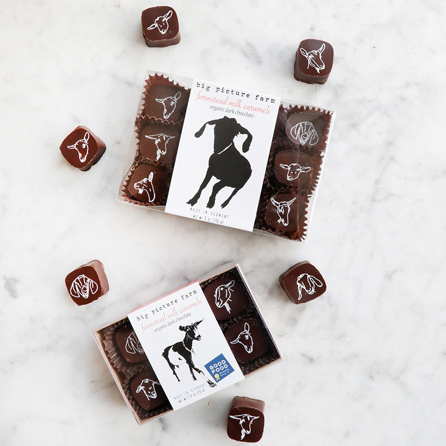 Chocolate Covered Goat Milk Caramels in a box