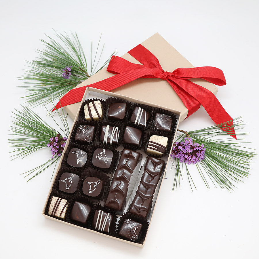 Chocolate Holiday Extravaganza Collection