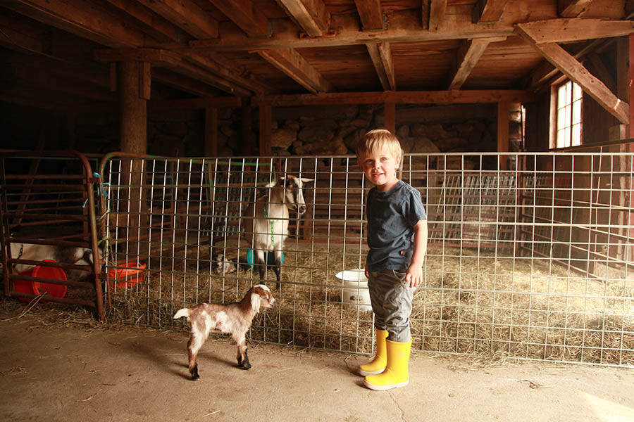 Kidding Season Farm Weekend I SOLD OUT (May 3-5)