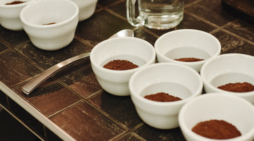 What you need to know about coffee tasting