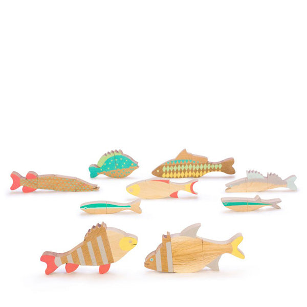 Eperfa Magnetic Fish Puzzle