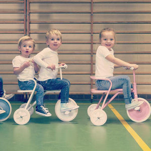 Foxrider Tricycle – Pink