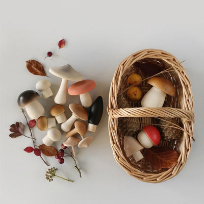 Moon Picnic Forest Mushrooms Basket