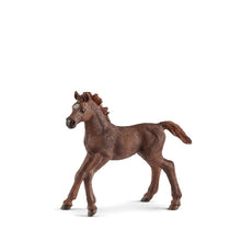 Schleich Horse - English Thoroughbred Foal