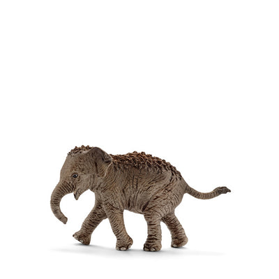 Schleich Asian Elephant – Calf