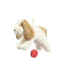 Senger Naturwelt Music Box - Dog