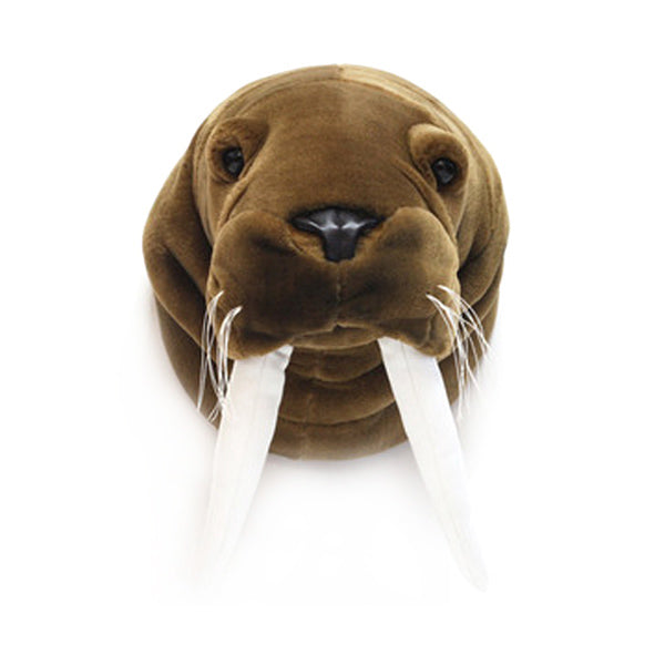 Wild and Soft Animal Head – Walrus Jacob