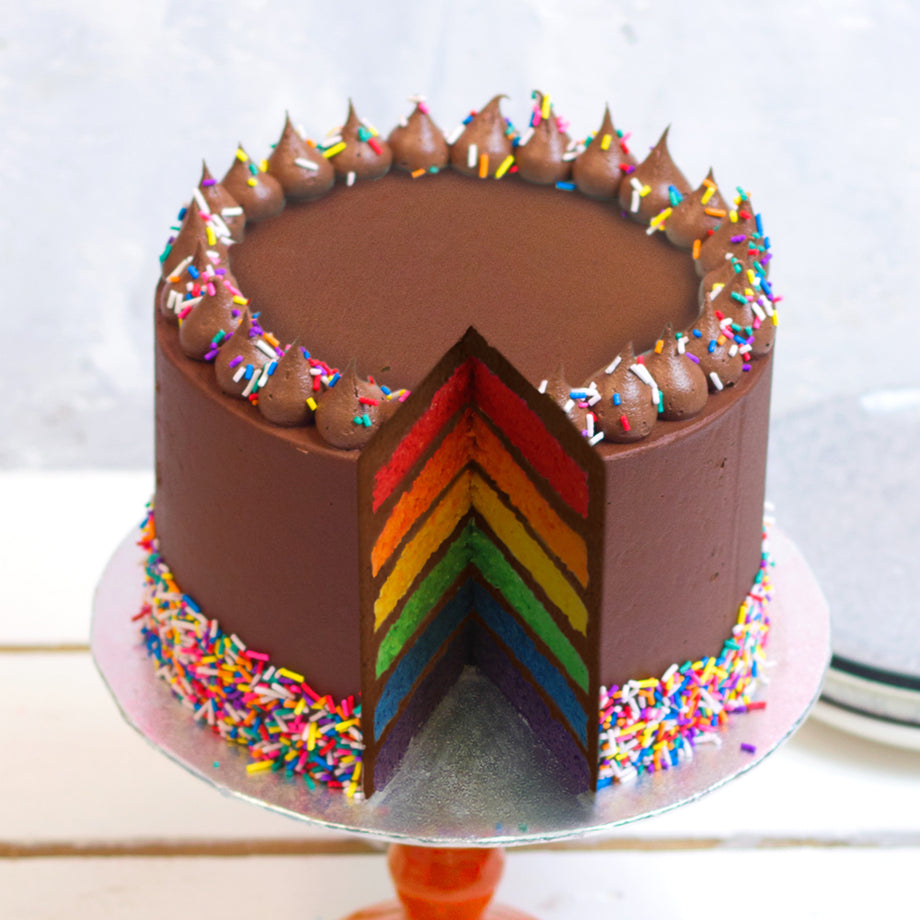 Five Tier Chocolate Rainbow Cake with Chocolate Icing and Sprinkles