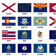 Usa State Flags-50 US States Flags Poster