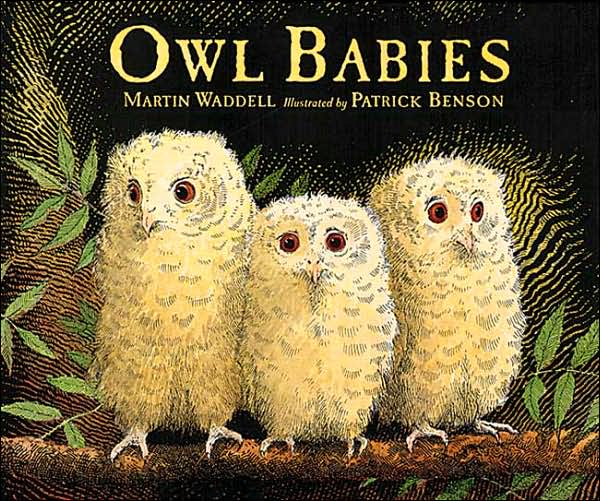 """Owl Babies"" Board Book"