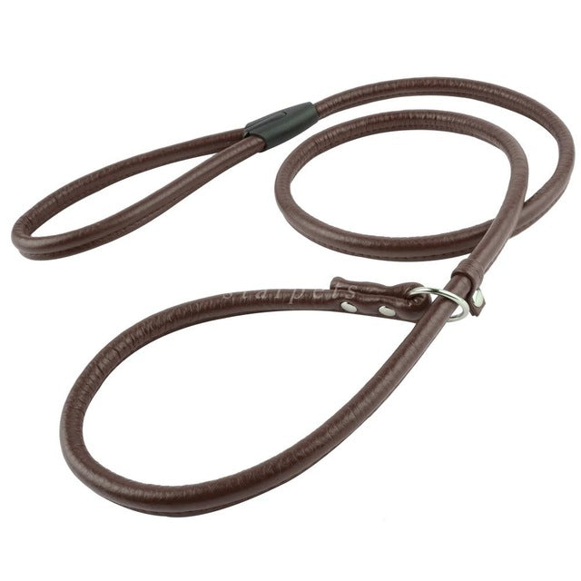 Leather Slip On Dog Leash