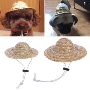 Hawaiian Style Sombrero Dog Hat