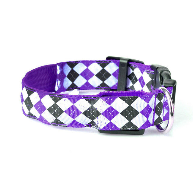 Dog LED Night Safety Collar