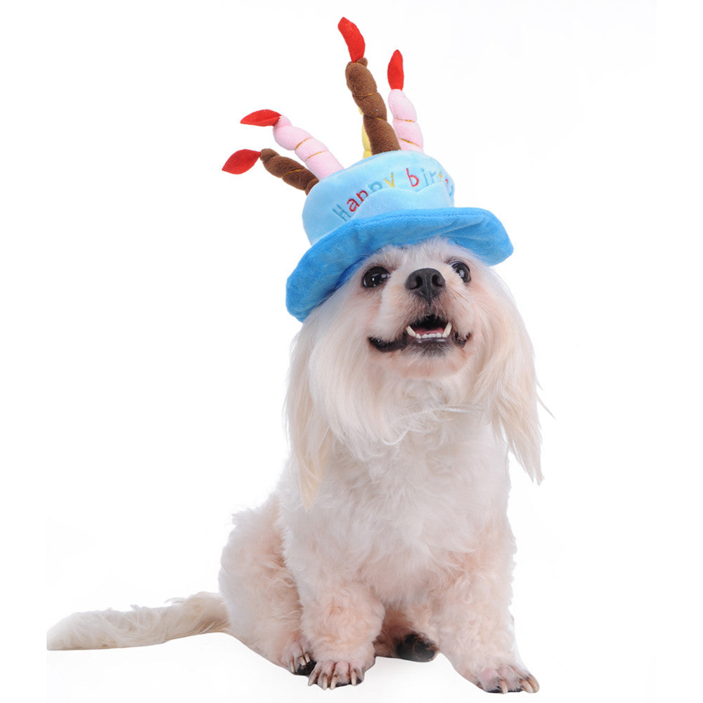 Dogs Birthday Cake Hat With Candles