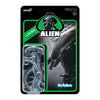 Alien Xenomorph ReAction Figure - The Alien