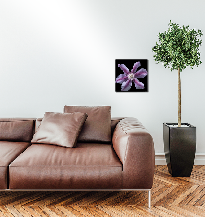 Floral Majesty VI Wall Art <br>(57682)<br> - New Depictions | Wall Art Prints