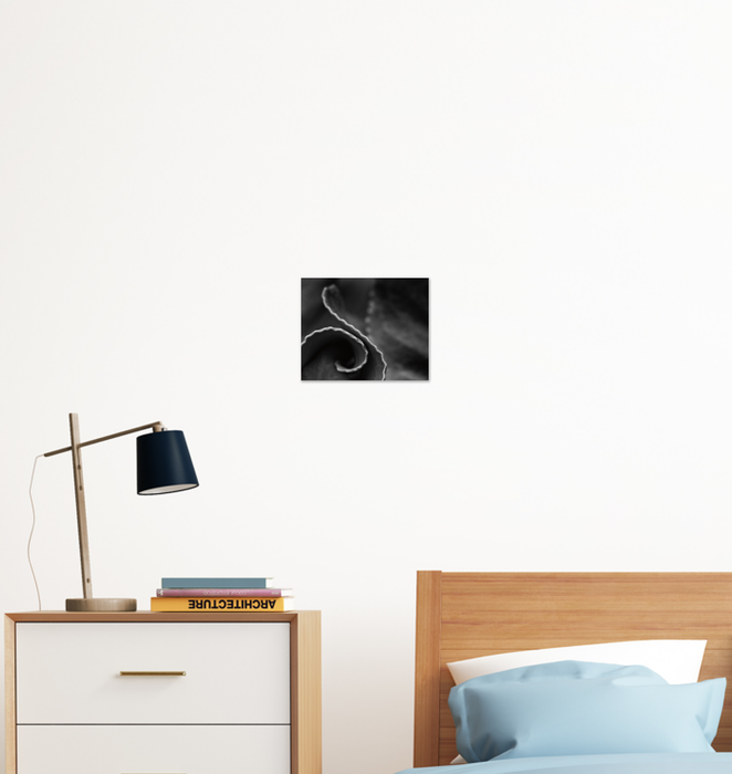Circling Around Wall Art <br>(55302)<br> - New Depictions | Wall Art Prints