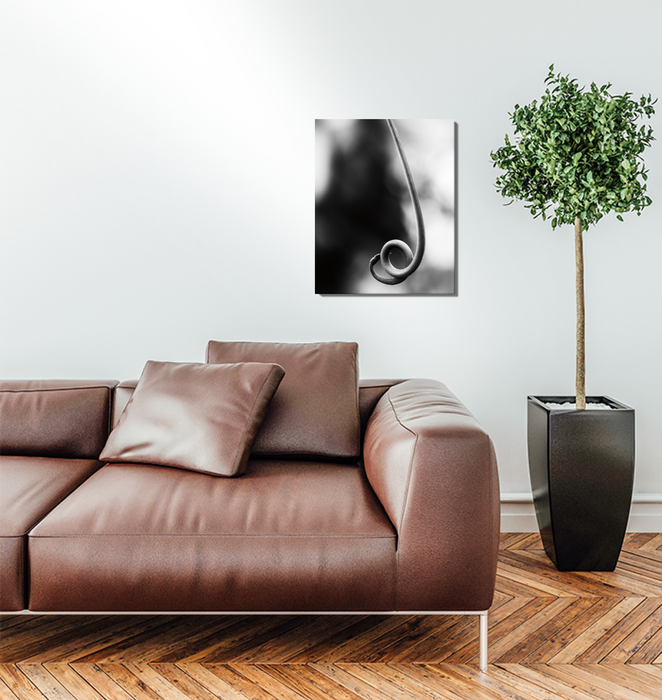 Curly Cue Wall Art <br>(55303)<br> - New Depictions | Wall Art Prints