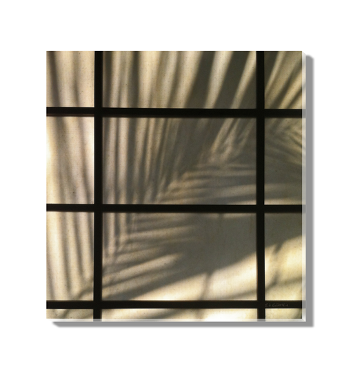 Palm Window Wall Art <br>(57278)<br> - New Depictions | Wall Art Prints