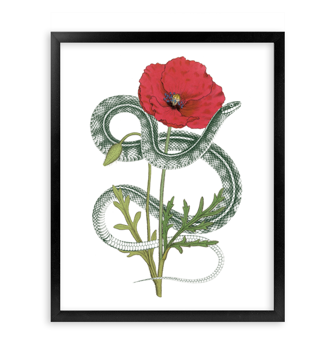 Natural Beauty I Wall Art <br>(56874)<br> - New Depictions | Wall Art Prints