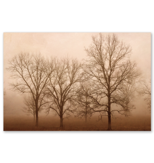 Morning Calm III Wall Art <br>(55168)<br>