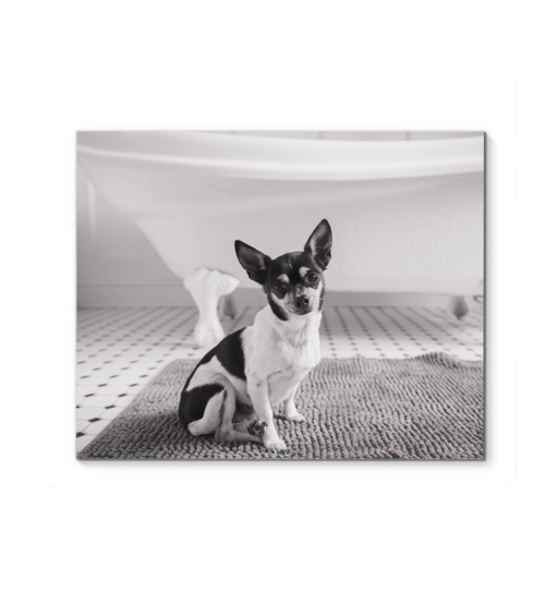 Bath Time Wall Art <br>(58222)<br>