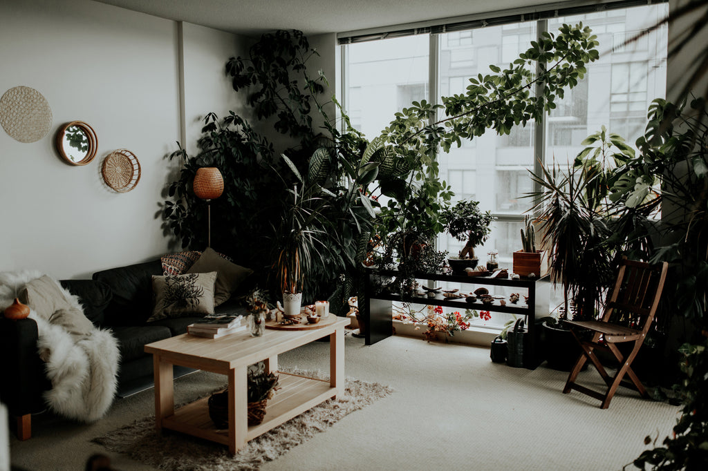 Mindful Moments | 5 Simple Ways to Zen Your Home