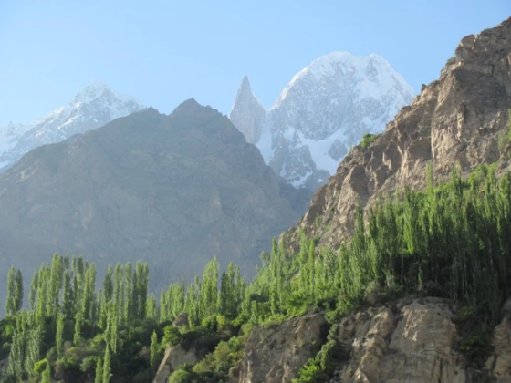 the himalayas where hunza people live and the apricot seeds oil is made