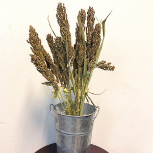 Dried Japanese Millet