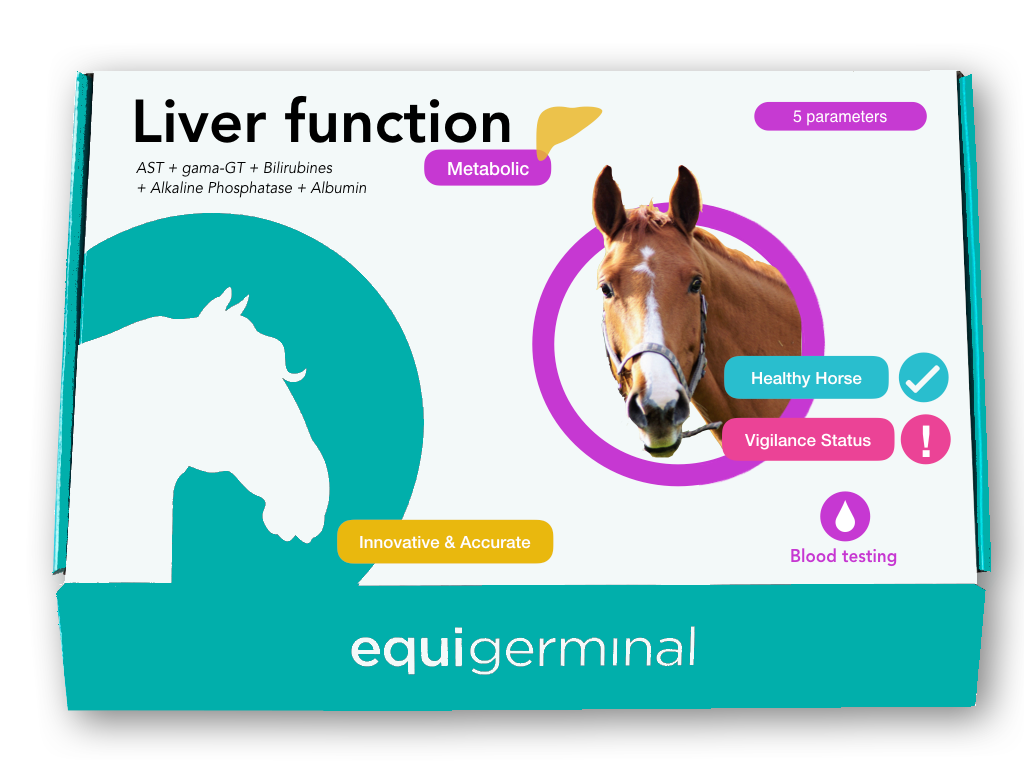 Liver function