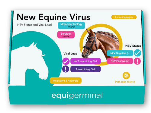New Equine Virus (NEV) Status & Viral load