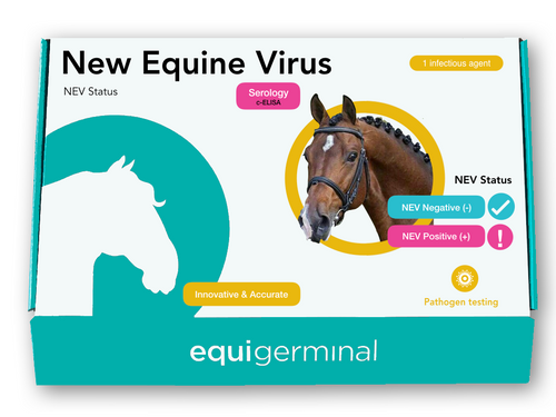 New Equine Virus (NEV) Viral Load