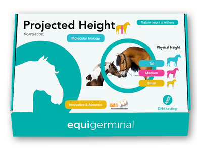 Projected Height test - LCORL