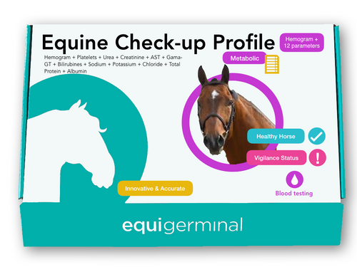 Equine Check-up profile